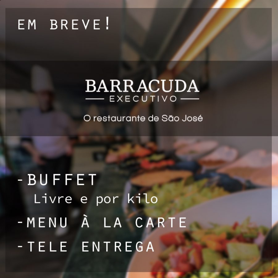 Barracuda Executivo